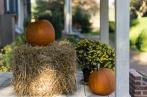 Pumpkins and hay